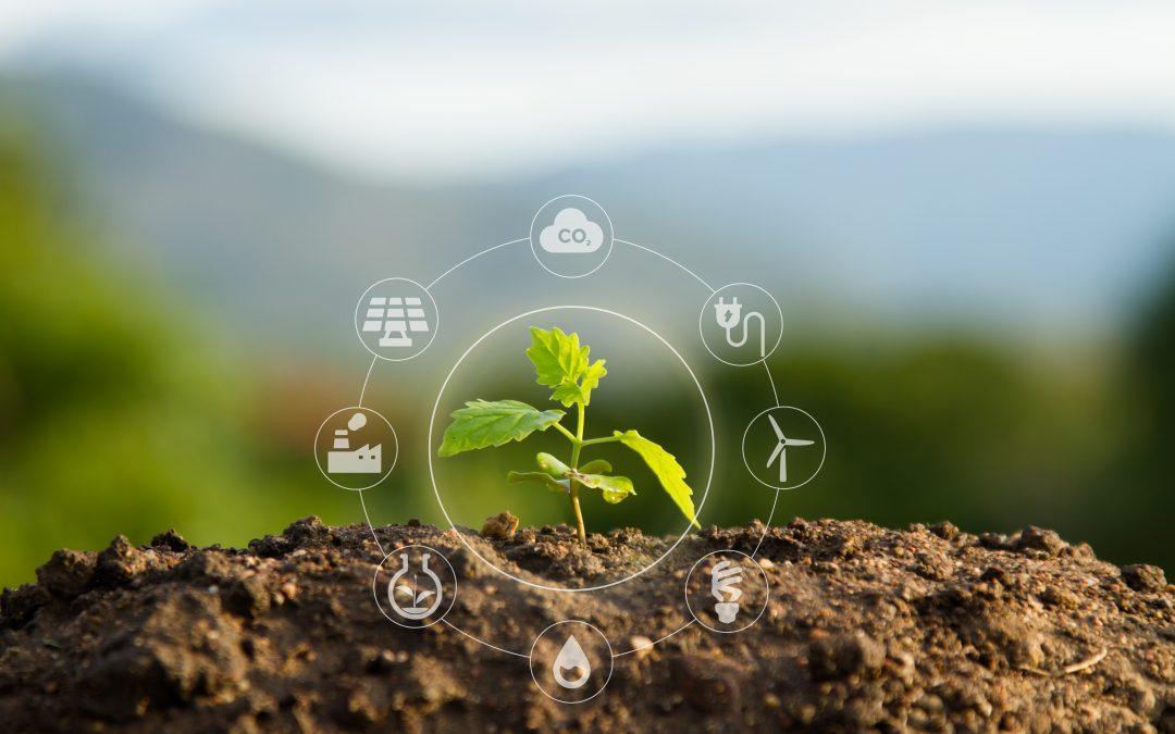 Mineral Blue et la loi anti-gaspillage de 2020! L'engagement d'Ecosynia