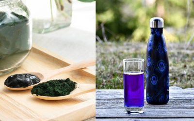 Did you say nutraceutical spirulina and phycocyanin?